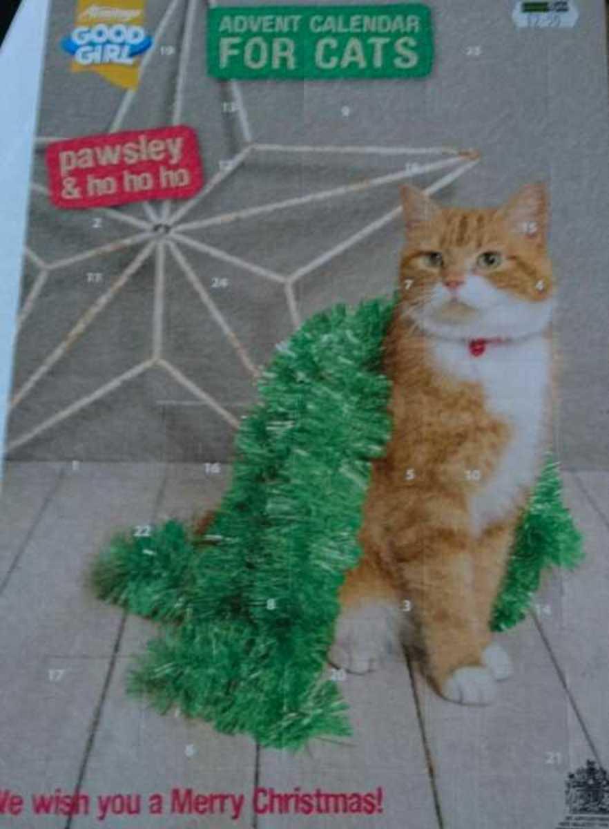 Advent Calendar For A Cat Olio