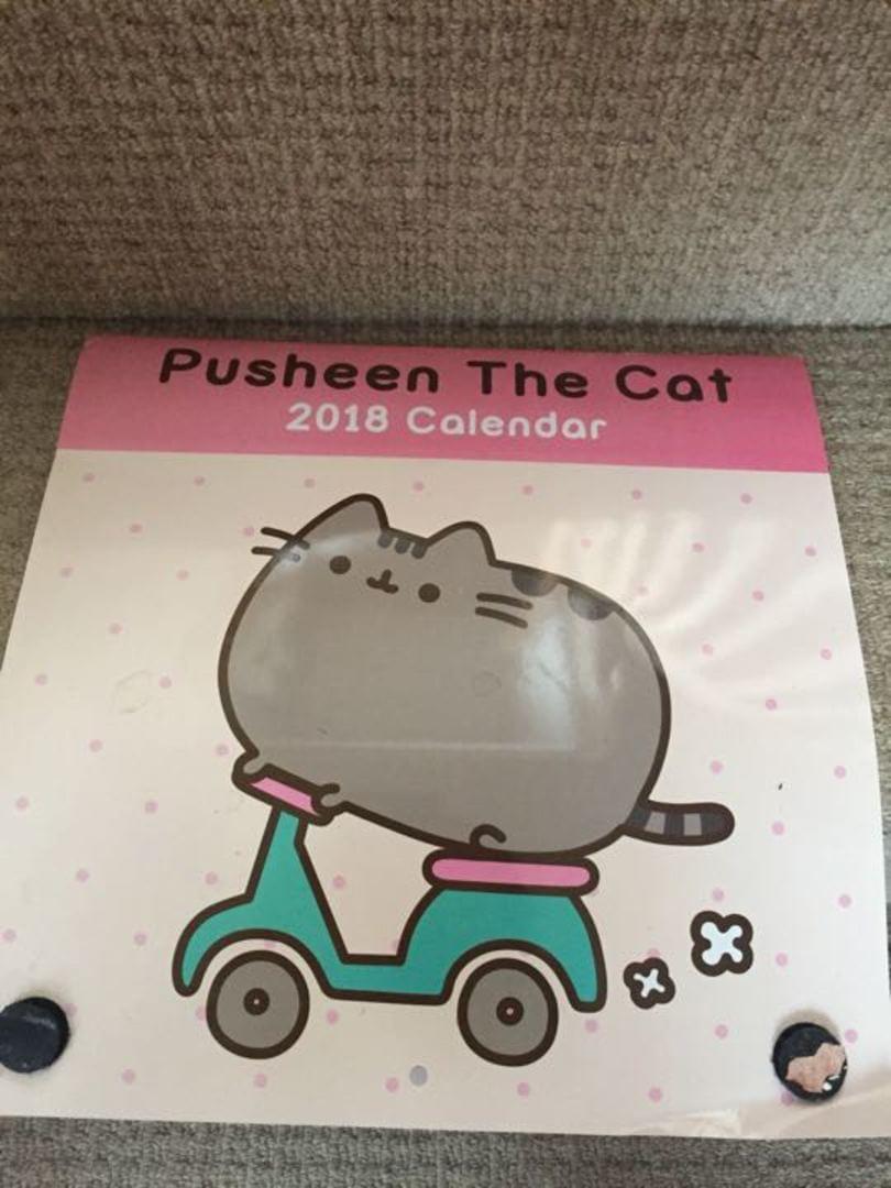 pusheen the cat 2018 calendar olio