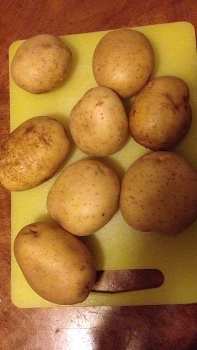 Free potatoes 🥔