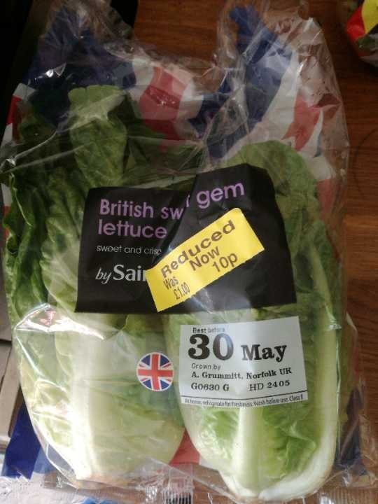 British sweet gem lettuce