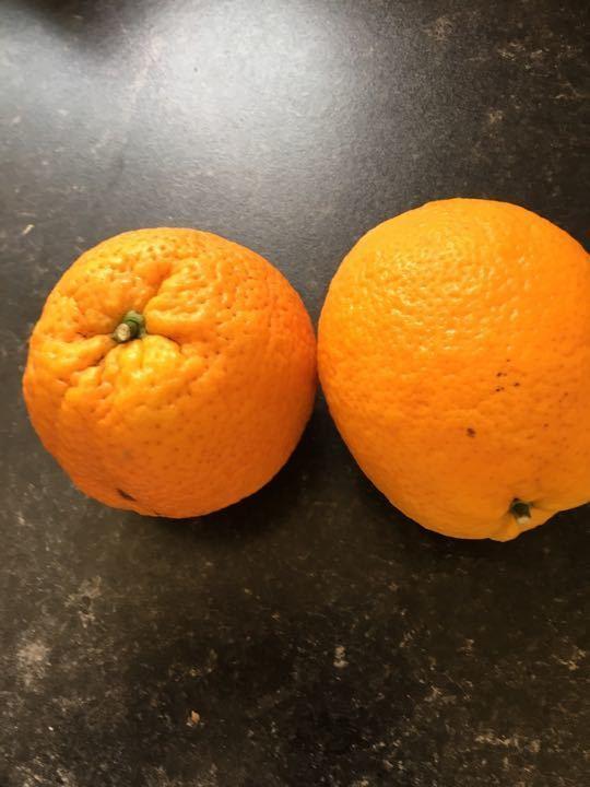 3 large oranges