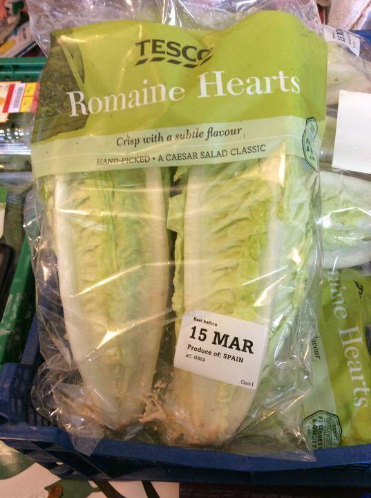 Romaine hearts lettuce
