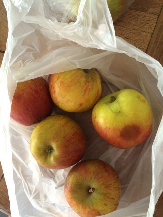 X2 Cox apples bag of 5