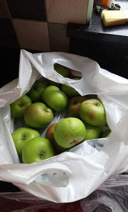 Large bag of cooking apples.