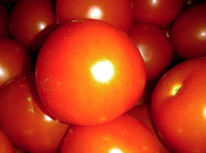 Around 1kg of tomatoes