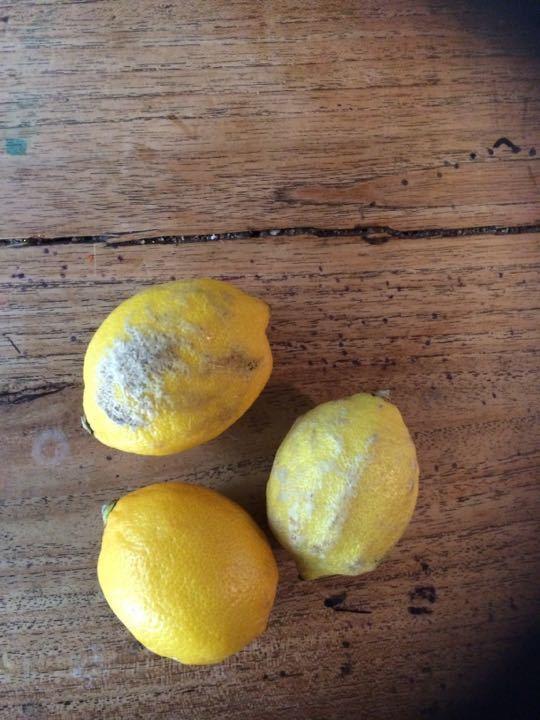 3 small lemons