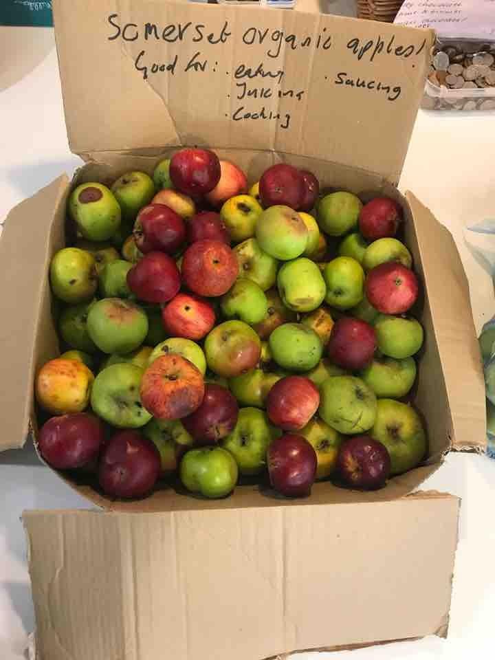 Loads of Somerset organic apples!