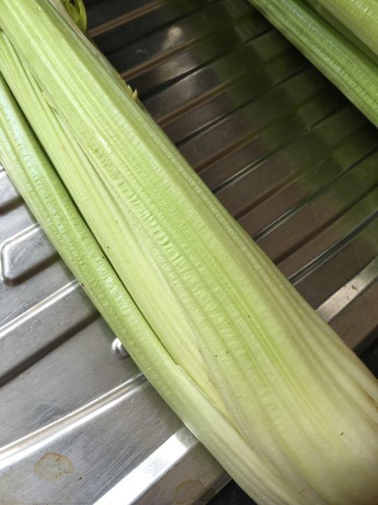 X2 celery (1 bunch per request)