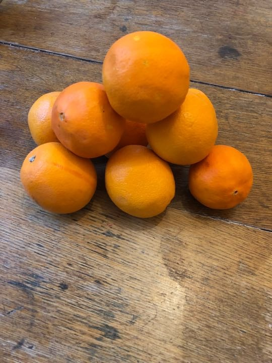 Juicing oranges x9