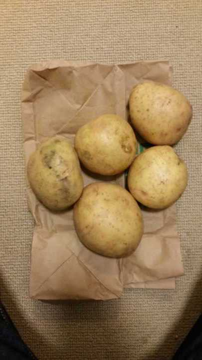 5 Jacket Potatoes