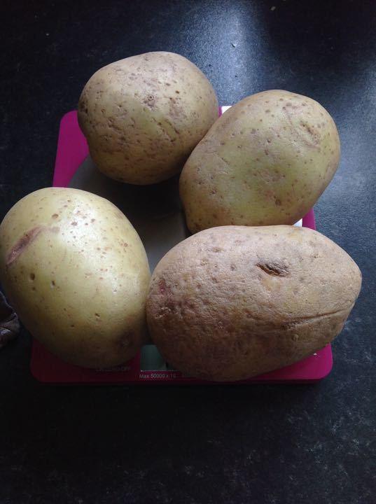X10 bags of 4 potatoes (1kg) 1 bag per family request