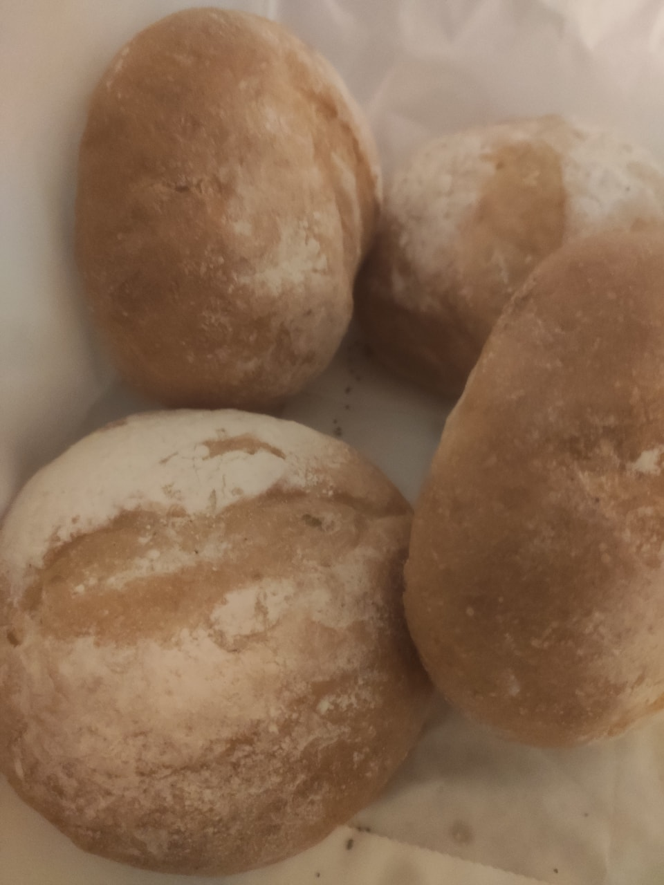 White buns from Pesso Bageri