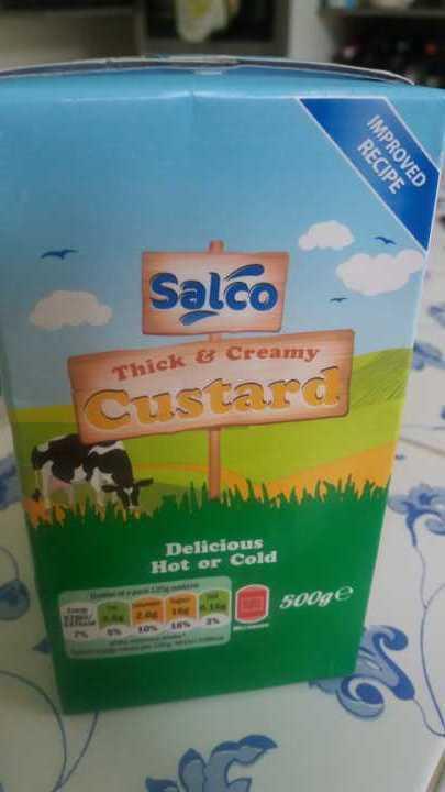 Salco thick and creamy custard 500g