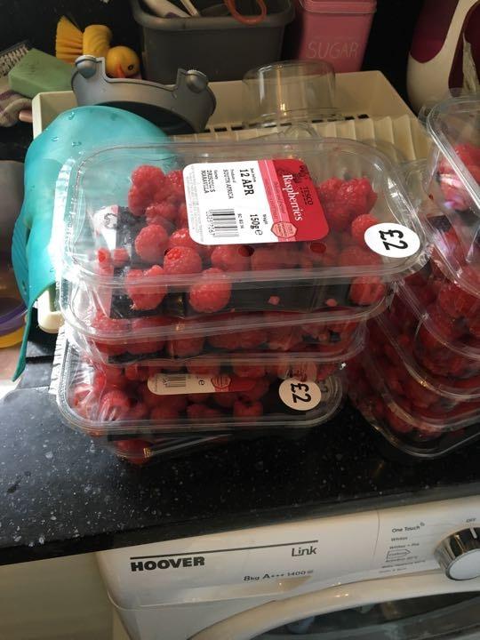 Raspberries x 3