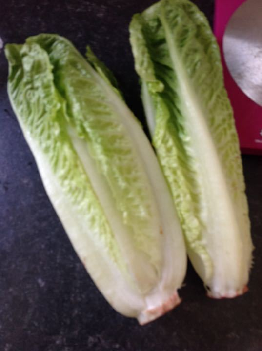 X2 sets of 2 hearts of romaine (1 set per request)