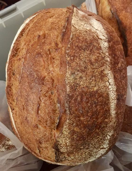 Artisan organic sourdough loaves - last one