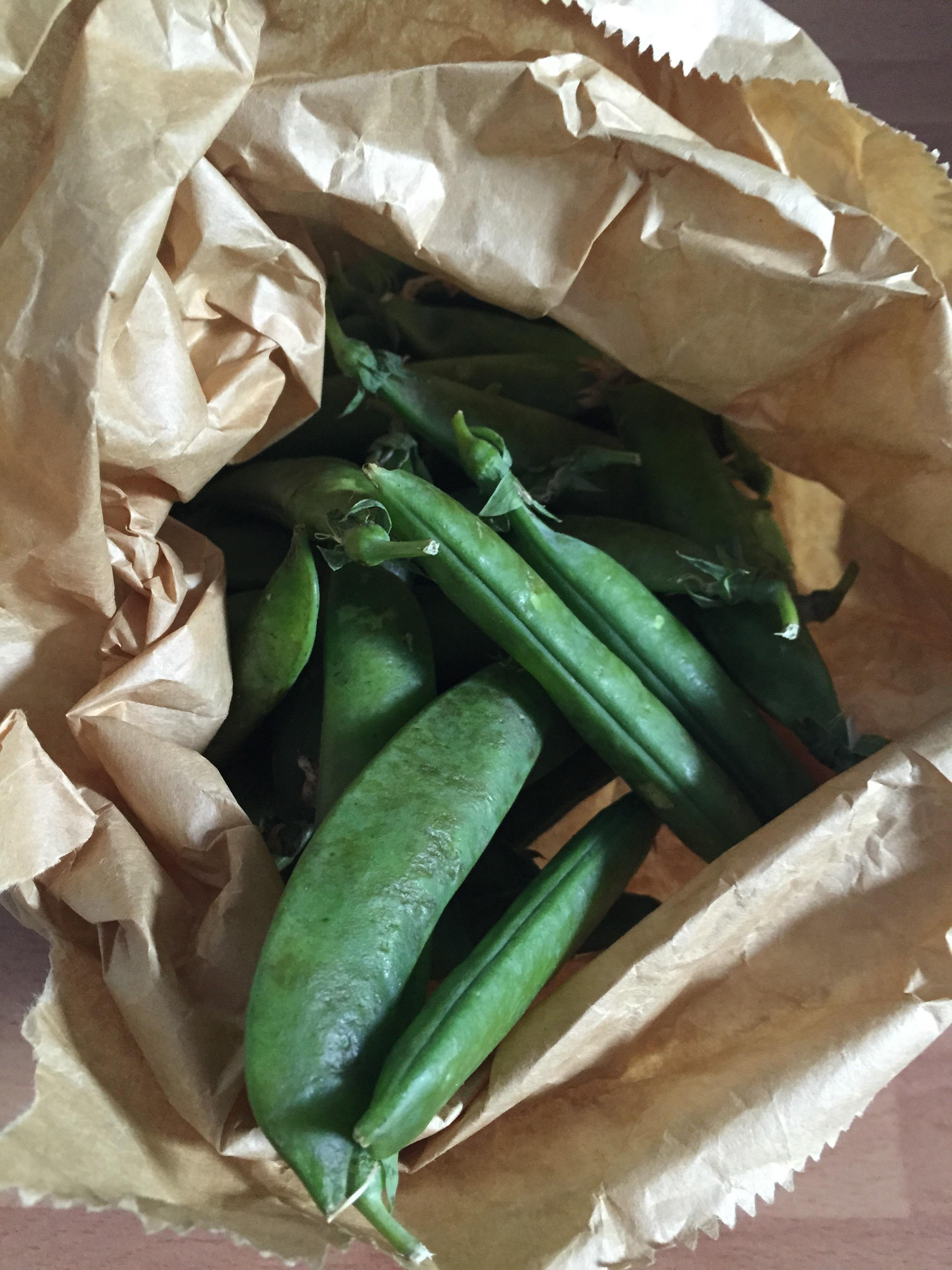 Garden peas in pods