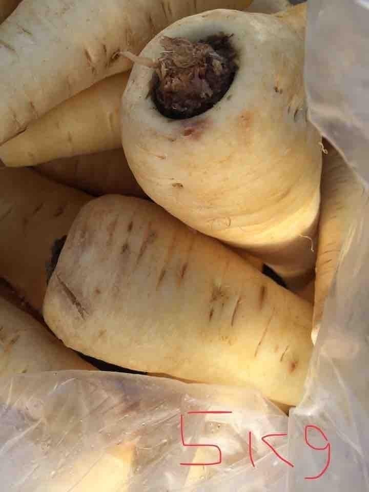 4 loose parsnips