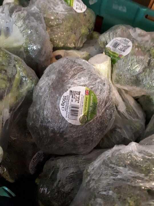 Lots of broccoli