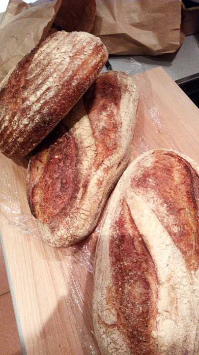 Artisan sourdough loaf