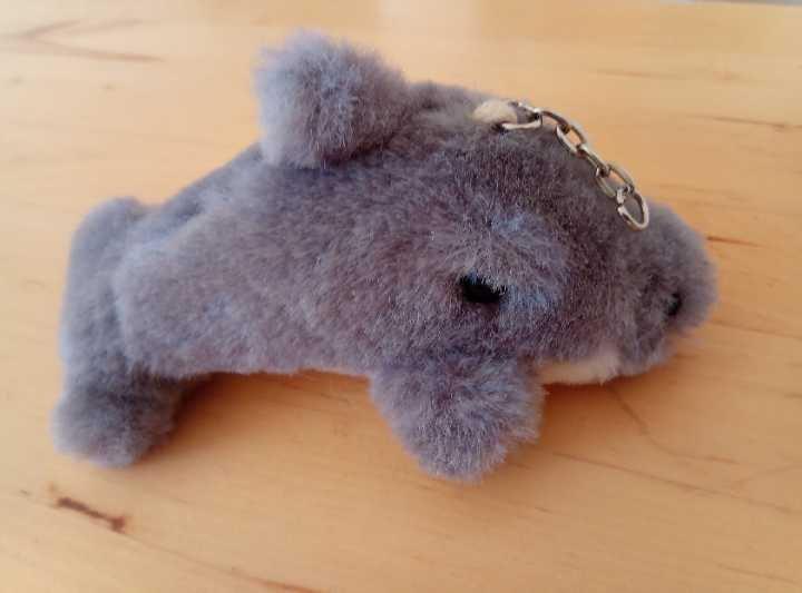 key tag - dolphin