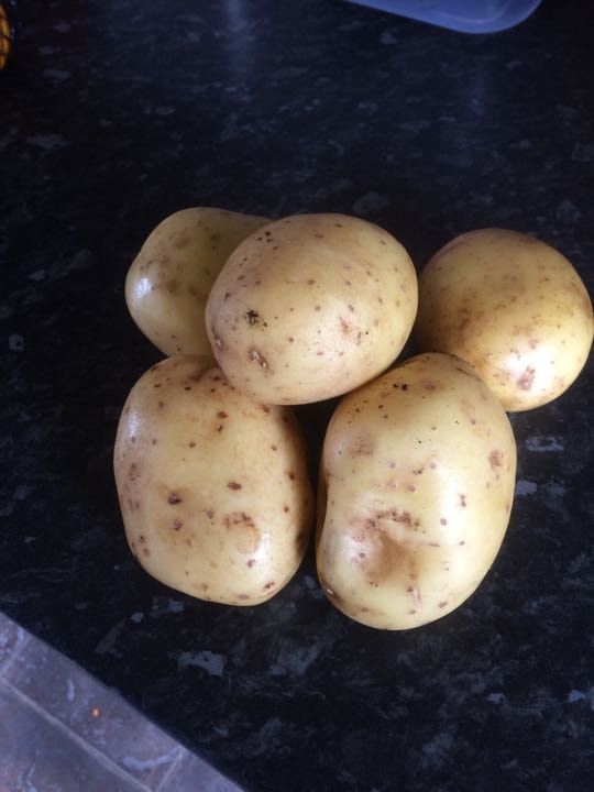 5 potatoes ( 2 lots available)