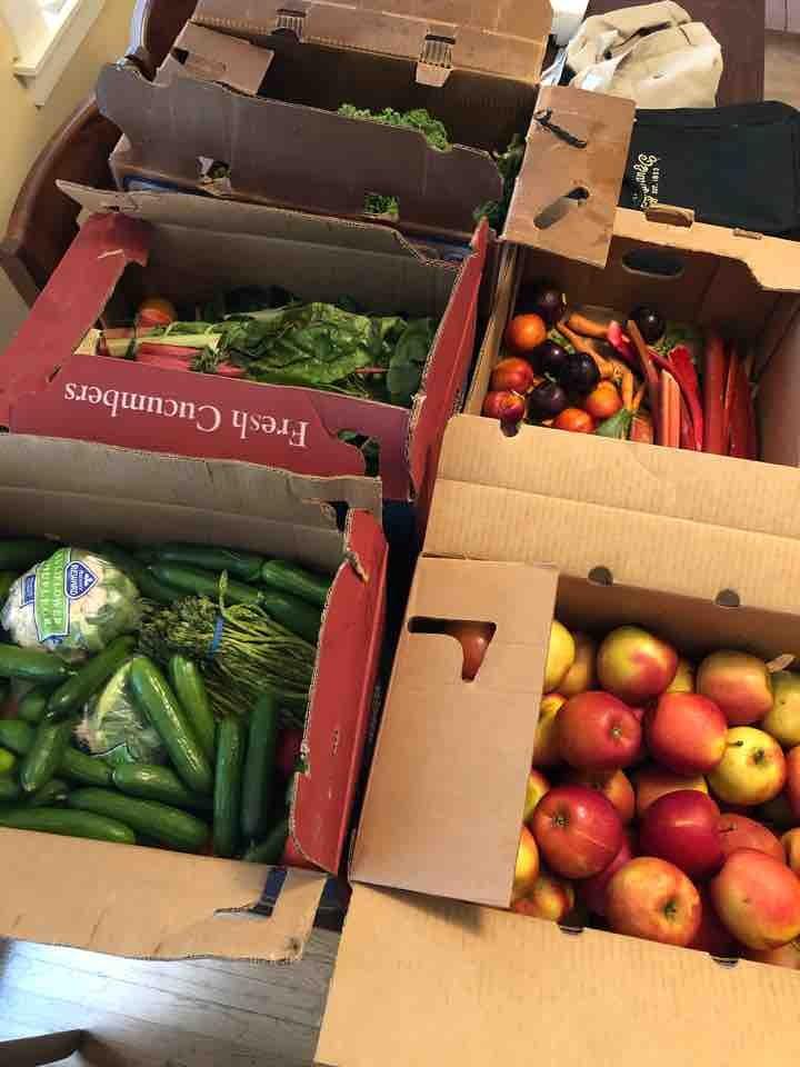 Variety of produce ALBANY