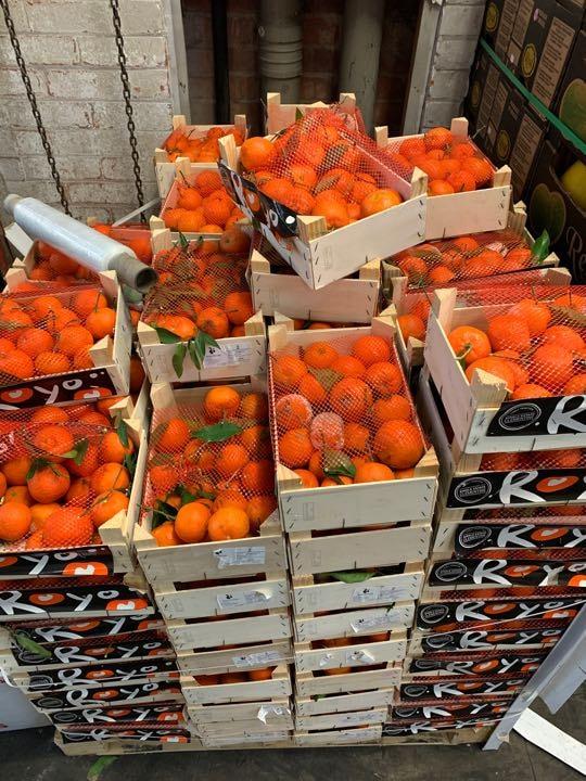 Leafy Mandarine n oranges
