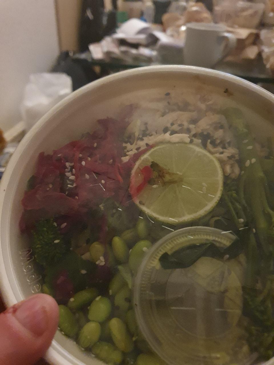 Pret tamari and ginger chicken salad bowl