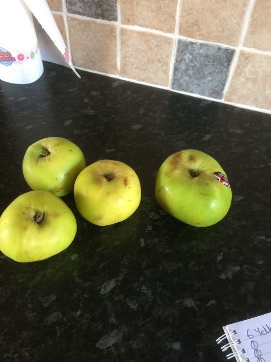 2 cooking apples