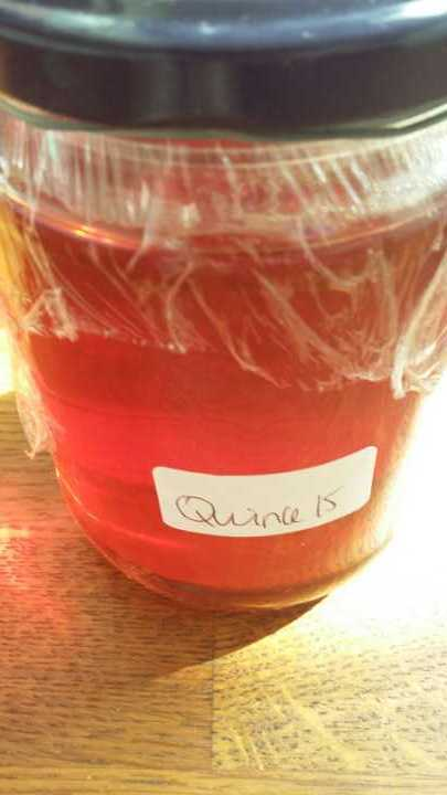 Homemade Quince Jelly