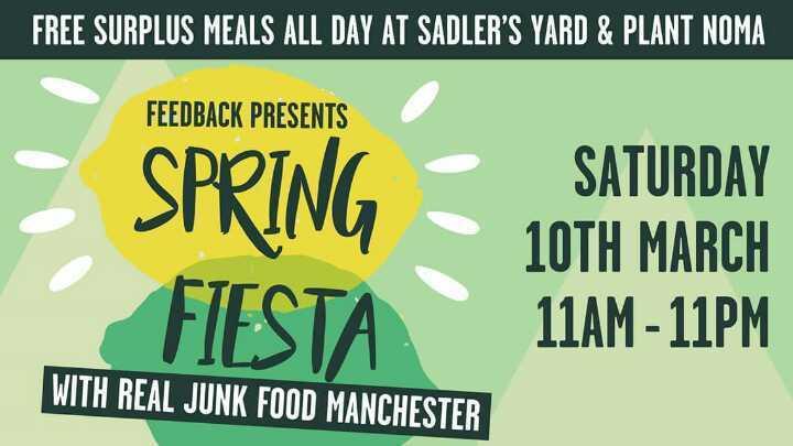 Feedback Spring Fiesta