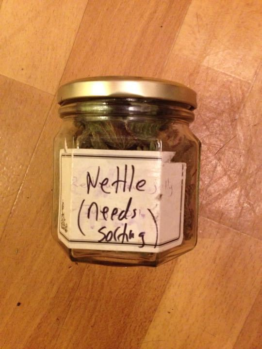 Jar dried nettles