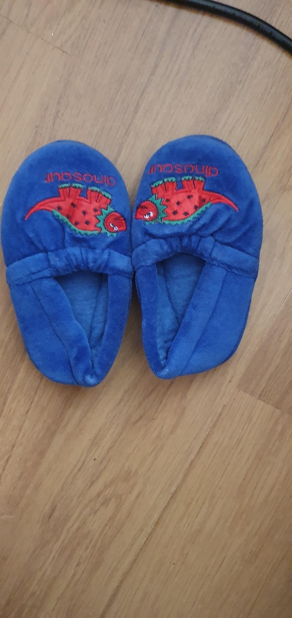 Toddler dinosaur slippers.