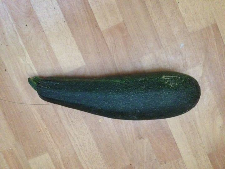 Marrow (ok, overgrown courgette)