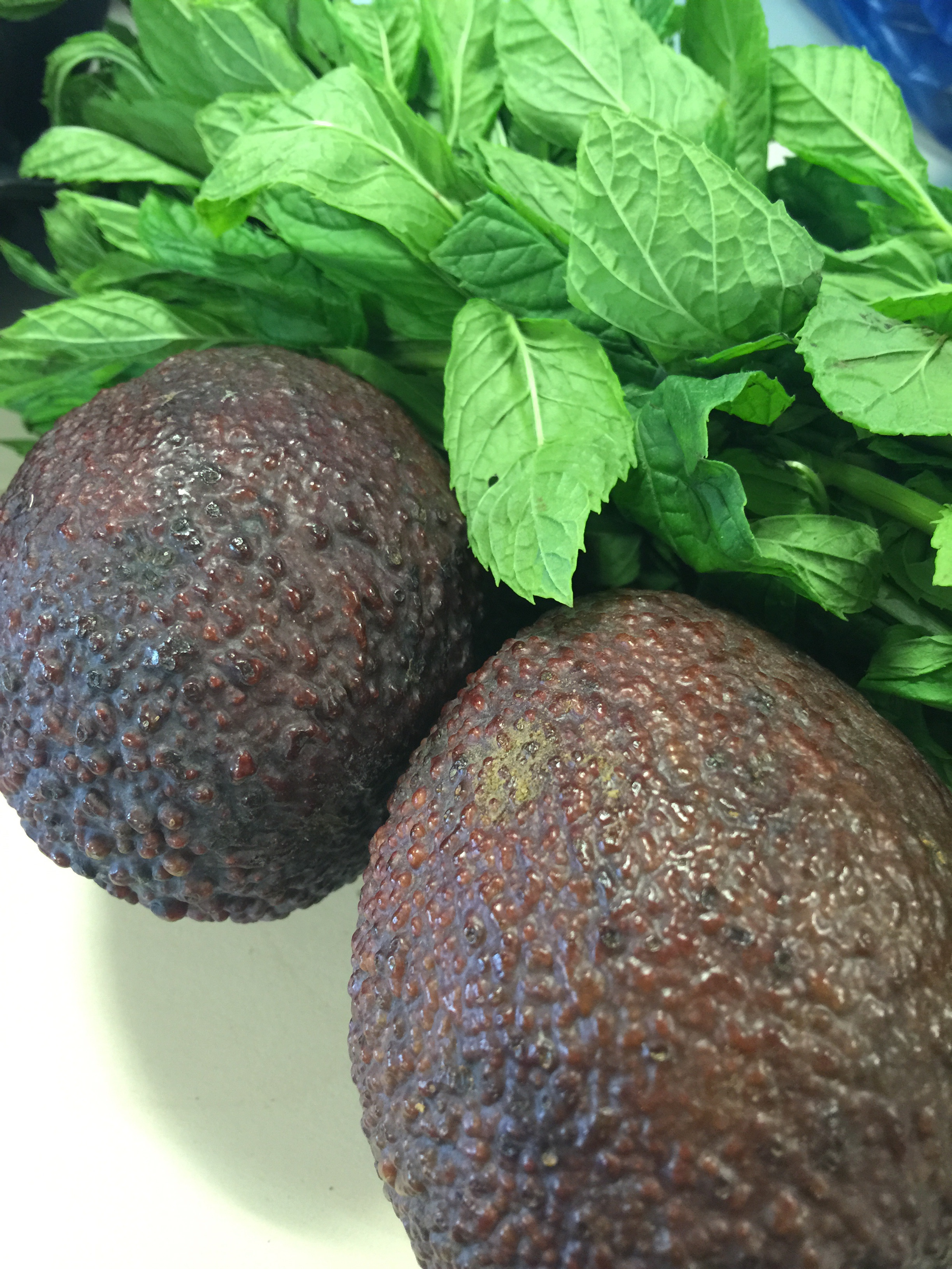 Two ripe avocado and half a bunch of fresh mint