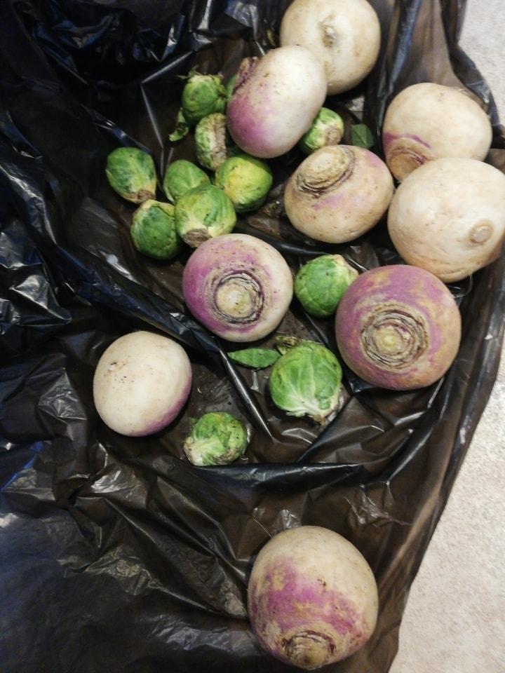 Loose winter veg