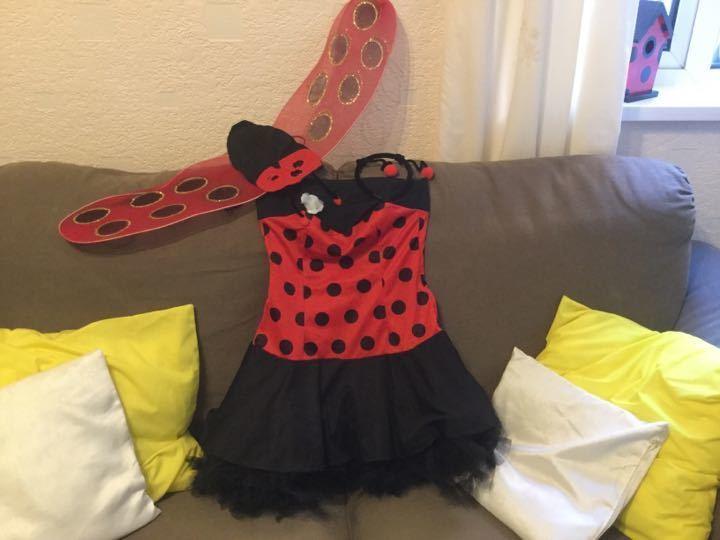 Ladybird dressing up costume