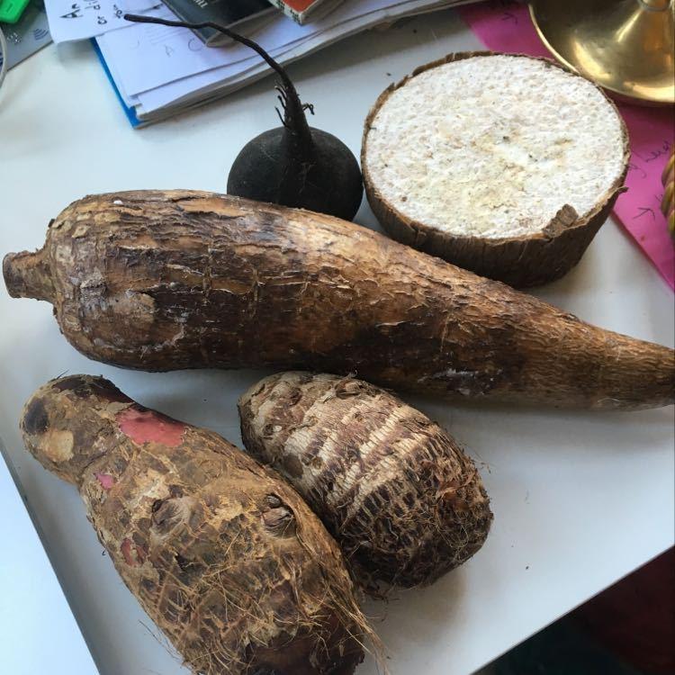 Cassava, yam, ebboe, black raddish