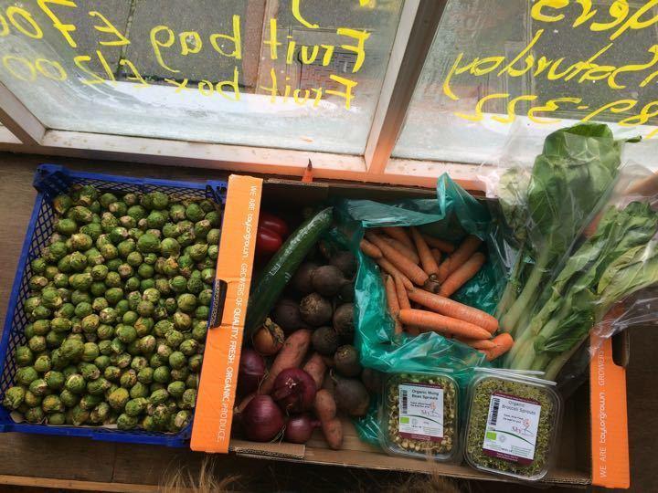 FIRST COME FIRST SERVED- organic veg