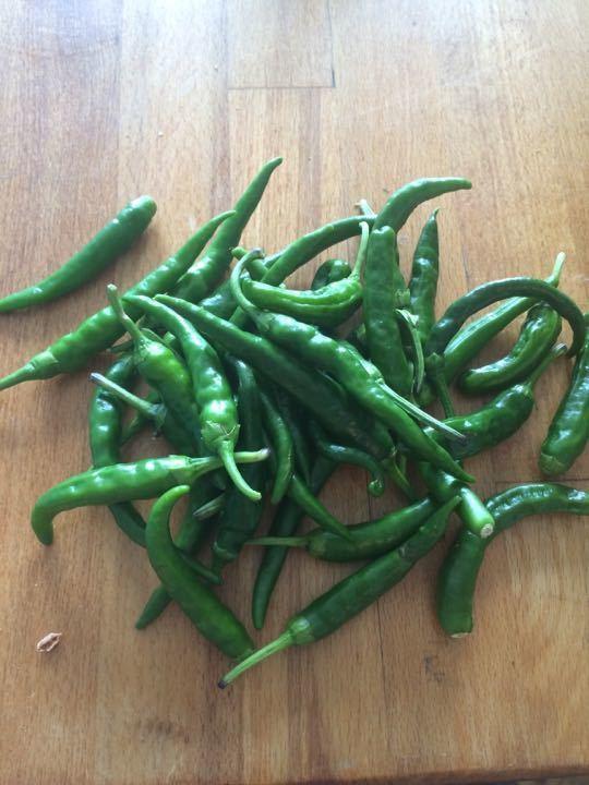 Homegrown chillis