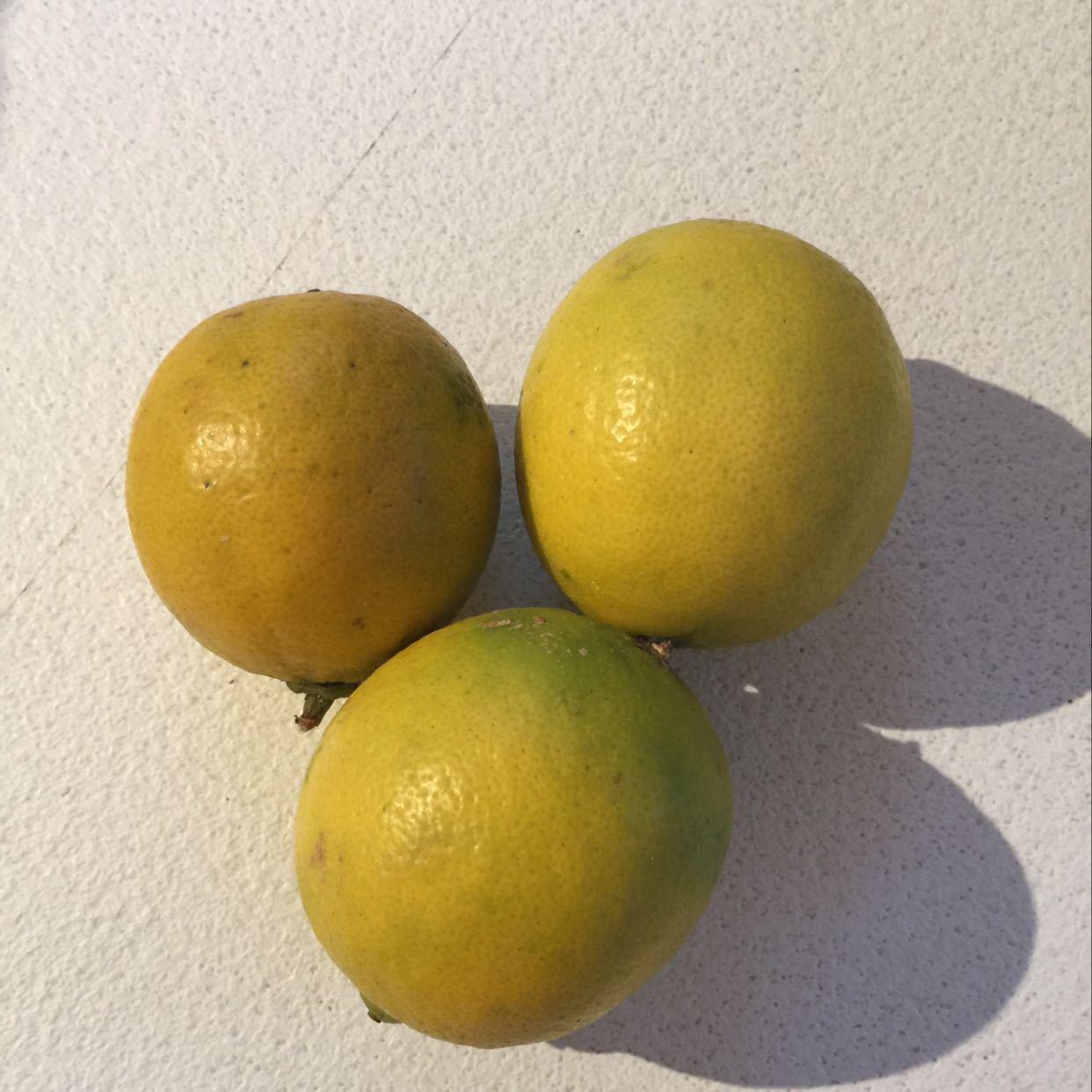 3 limes (not organic)