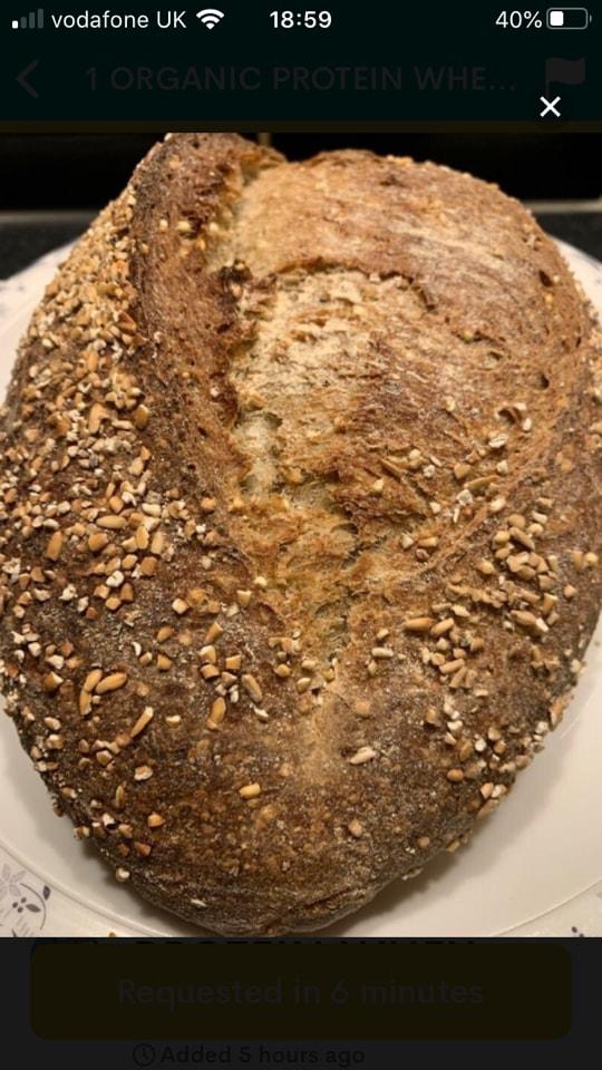 5 x  organic protein whey bread