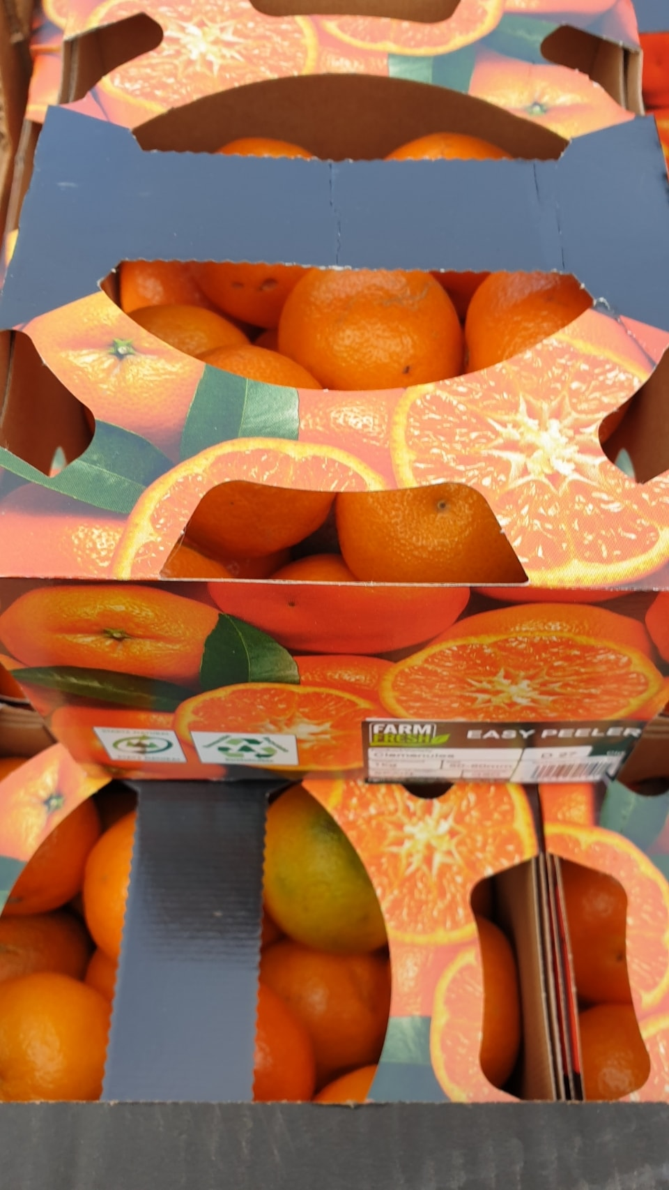 Clementine easy peelers