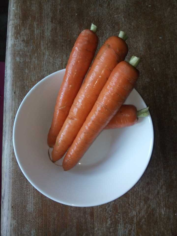 delicious organic carrots!
