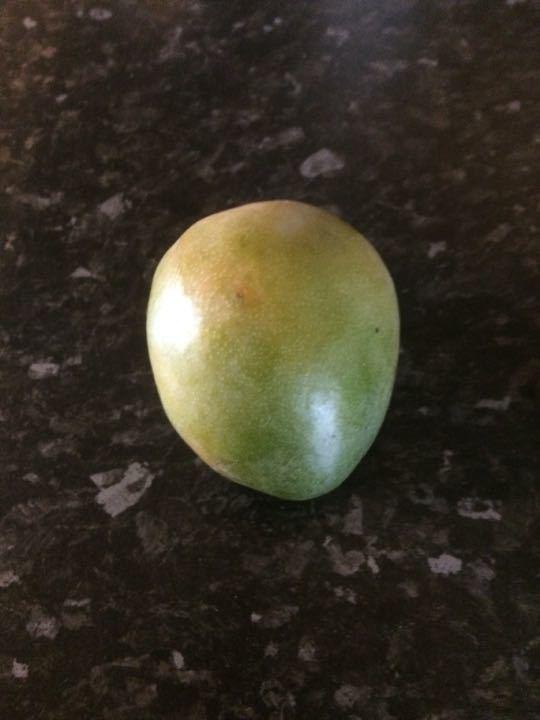 Mango x 2 (1 per request)