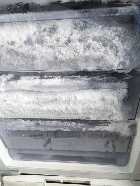 WANTED - kind local person with freezer space!