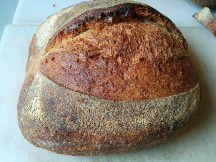 800g sourdough from the dusty knuckle bakery
