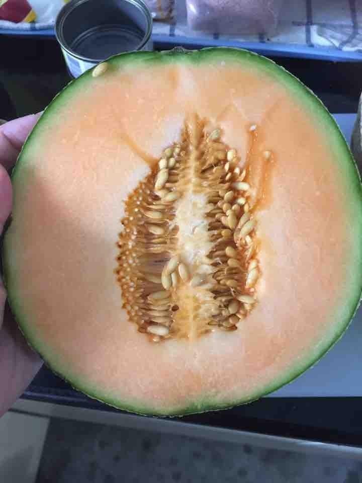 (2/2) Rock Melon half