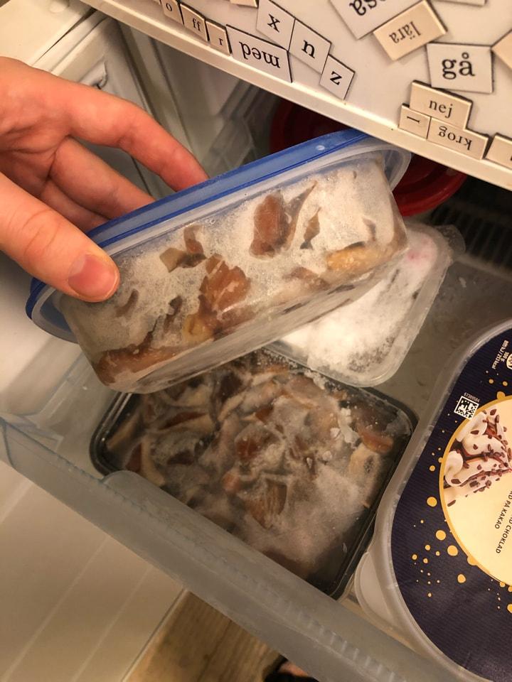 Frysta svampar (8kg) och jordgubbar (3kg)